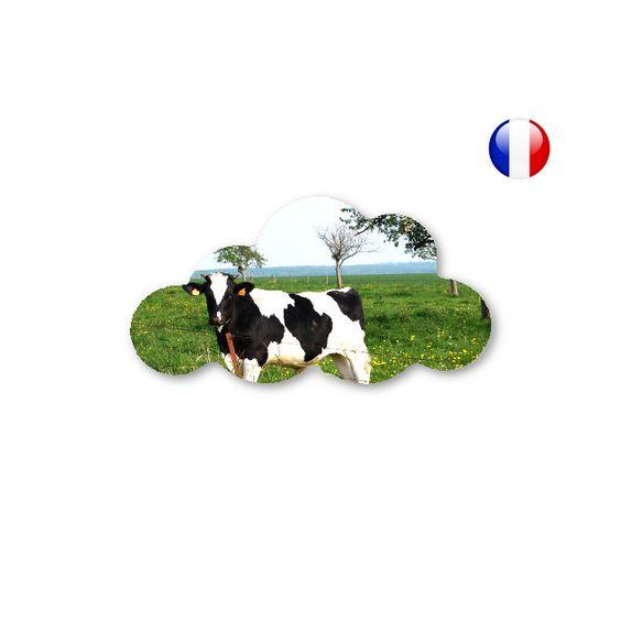 bois medium mdf décoré nuage la vache : Décorations murales par impression-3d