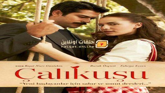 مسلسل طائر النمنمة مترجم Urdu Novels Tv Series Series