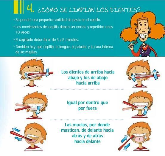 ¿Cómo se limpian los dientes?: Body, Consejos Nutricion, Preescolar Salud, Higiene Personal Preescolar, Cuidarte, Personal Care, Vivir Saludablemente, Teeth, Salud Higiene
