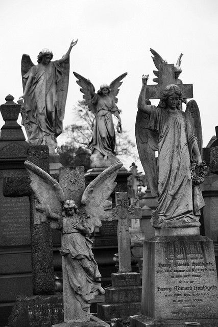 A multitude of Angels <3    Angels in Rock cemetery, Nottingham. Its a victorian cemetery with caves, and many levels