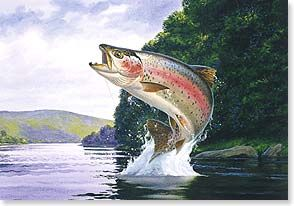 Trout jumping out of water recherche google endroits for Fish out of water watercolor