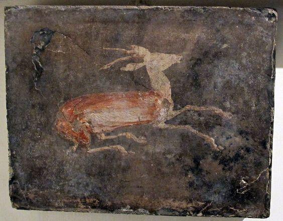 Villa dei papiri - fresque:
