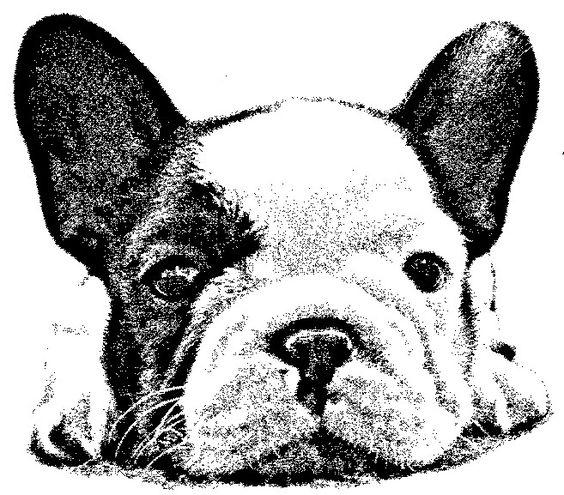Laminas en blanco y negro p g 359 aprender for Laminas blanco y negro