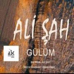 Ali Sah Yuce Dag Basinda Uzum Kol Atmis Mp3 Indir Alisah Yucedagbasindauzumkolatmis Yeni Muzik Sarkilar Muzik