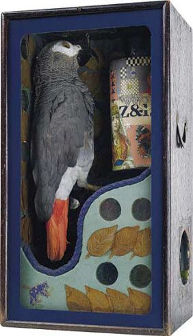 Fortune Telling Parrot, 40.8 × 22.2 × 17 cm - one of Joseph Cornell's marvellous boxes