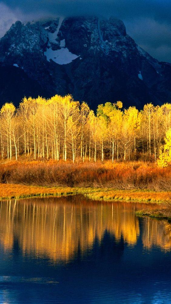 autumn, leaves, yellow, trees, reflection, peak