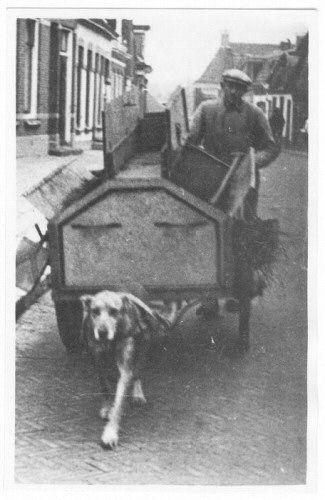 Dorpsreiniger A. Miedema te Ferwerd, omstreeks 1930, met een hondenkar.