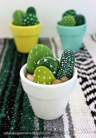 cactus, décoration, galets, pots