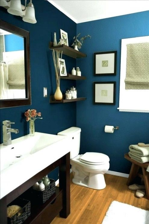 Good Blue And Brown Bathroom Decor Best Bathroom Paint Colors Small Bathroom Remodel Bathrooms Remodel