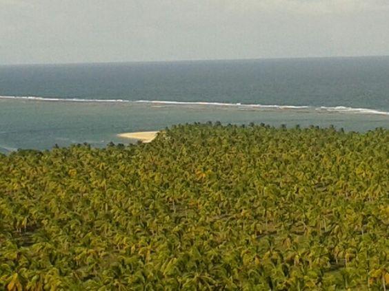 Praia do Gunga! Maceió!
