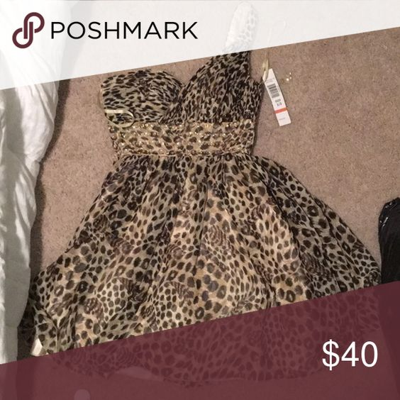 Leopard print dress brand new one shoulder leopard print dress with tags still intact jump apparel Dresses One Shoulder