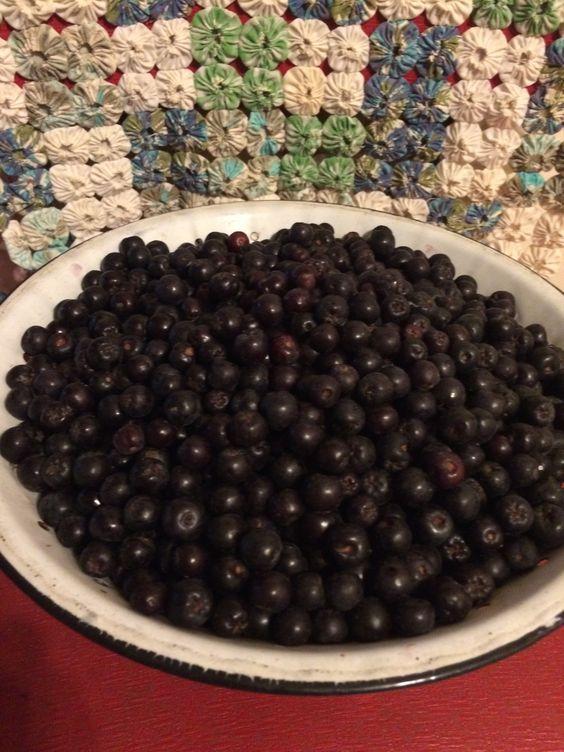 Chokeberry recipes (including the jam using pectin)