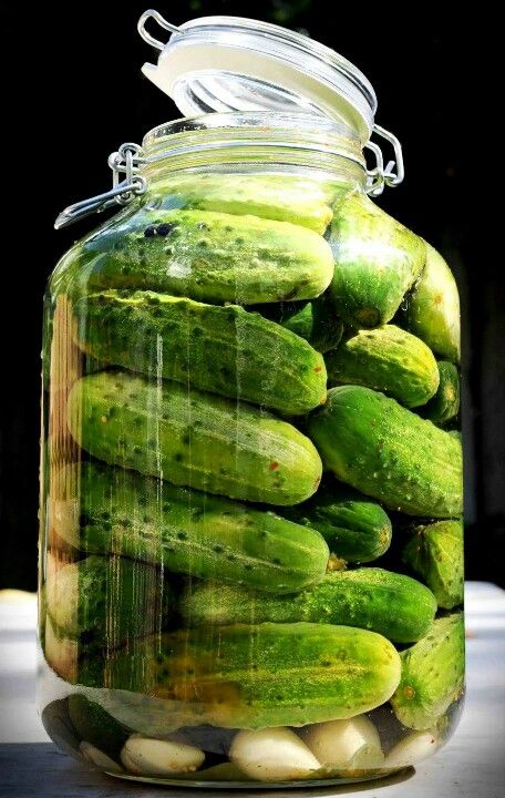 Pickle Jar lol...vegas moments