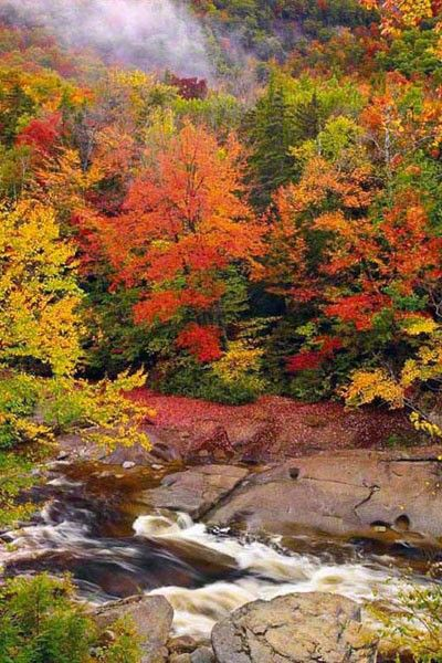 ✯ Swift River Mist @ White Mountain National Forest, New Hampshire © Peter Lik Fine Art Photography ✯