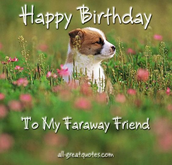 happy birthday messages for friends - Google Search: