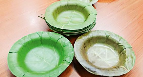 - | <i>Crédito: Vida Simples Digital | Folhagem é a matéria-prima do prato biodegradável criado por pesquisadoras de uma Universidade na Tailândia