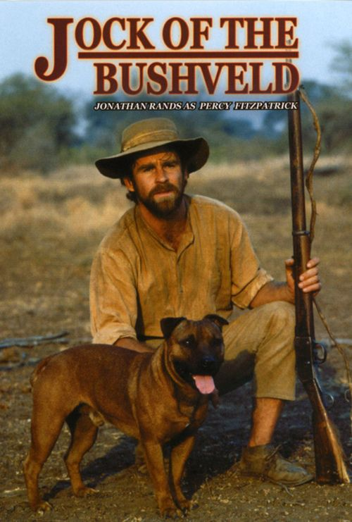 Dog Movies Based On True Stories