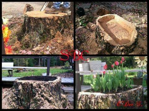 I just love this idea! It is very costly to have a stump grinded but what a lovely, natural container you can make it! No one else would have one quite like yours! Just cut out the inside, drill drainage holes in the sides and plant your favorite flowers! Beautiful! (¯`v´¯) `*.¸.*´ ¸.•´¸.•*¨) ¸.•*¨) (¸.•´ (¸.•´ .•´ ¸¸.•¨¯`•.•:*¨¨*:•..•:*¨¨*:•..•:*¨¨*:•..•... ┊ ┊ ☆ ┊ ★ ☆ FRIEND OR FOLLOW ME! I am always posting awesome stuff!