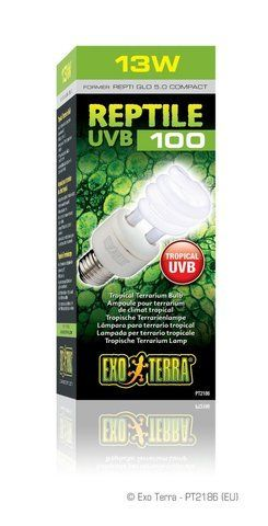 Pet Exo Terra Repti-Glo 5.0 Compact Fluorescent Tropical Terrarium Lamp - 13-Watt. Incadescent, Heat Supply Store/Shop - http://www.petsupplyliquidators.com/pet-exo-terra-repti-glo-5-0-compact-fluorescent-tropical-terrarium-lamp-13-watt-incadescent-heat-supply-storeshop/