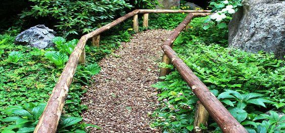 Utilisez la sciure de bois de vos arbres élagués pour recouvrir vos allées. LeBlogBio.fr #desherber #zerodechet #antigaspi #ecolo