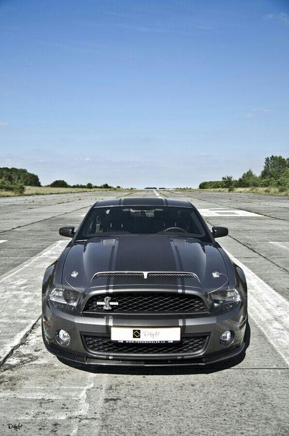 Mustang Cobra~
