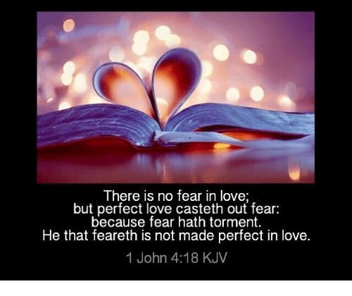 Pin by JANET SLABBERT on Printables   Kjv, Perfect love, Bible verse search