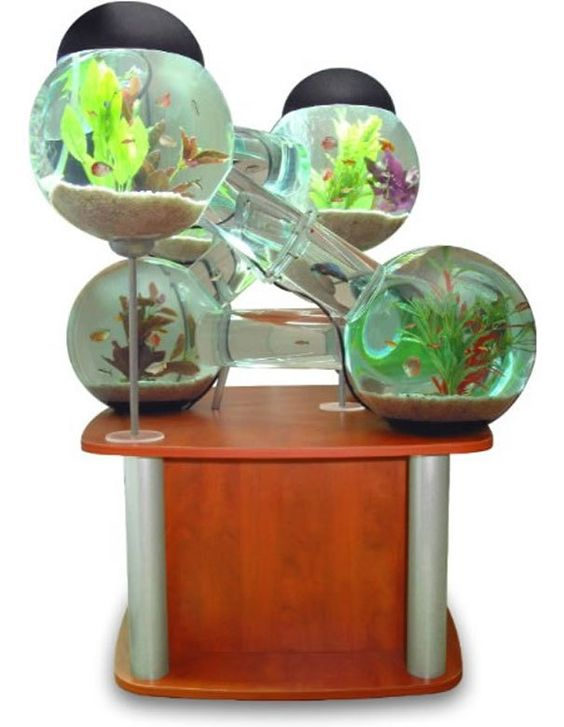 aquarium coffee table - Google Search