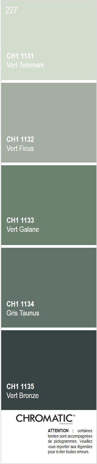 D couvrez toutes les nuances de gris color s du nuancier chromatic source d - Couleur de l annee pantone ...