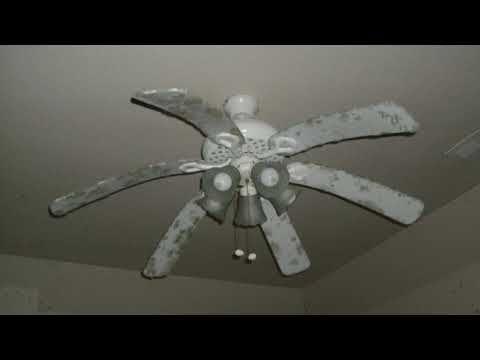 Abused Ceiling Fans Youtube Ceiling Fan Fan Ceiling
