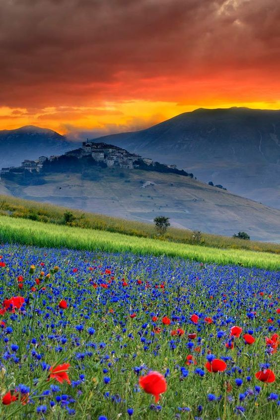 Gosh So Many Colors And All Natural Bright Saturated Flowers The Green Grass Still Being Hit Just Right By Th Italy Landscape Nature Photography Landscape