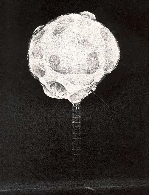 Ces photos ont été prises en 1952 lors de tests nucléaires dans le Névada par Harold Edgerton. Elles ont été prises moins de 1/10 000 000 de seconde après l'explosion grâce un appareil photographique spécial relié au détonateur et avec une durée d'exposition de 1/1 000 000s.