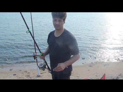 Youtube Youtube Fish