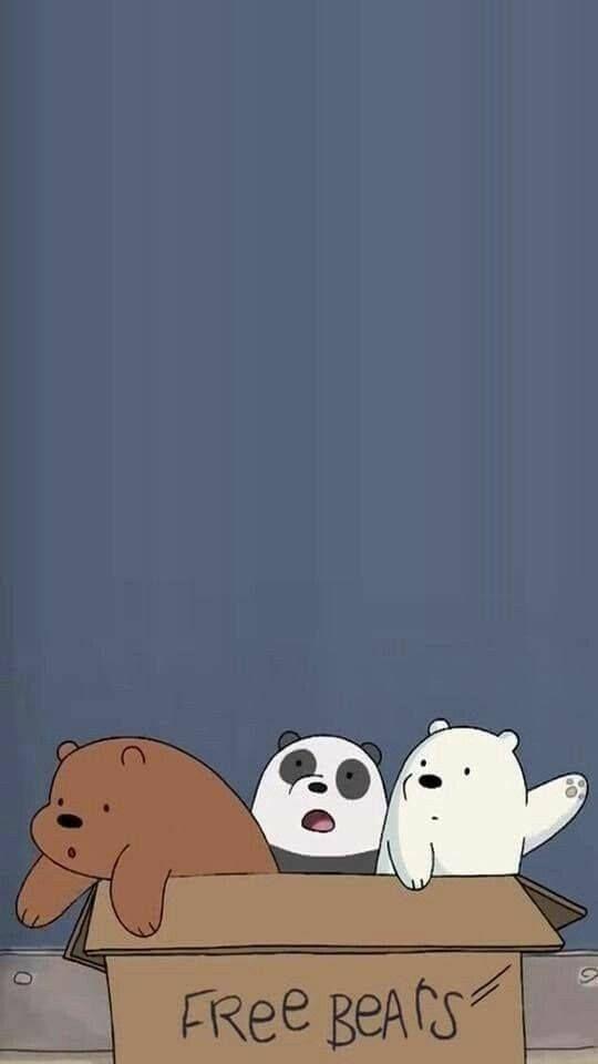 Pin Oleh Nhi Huỳnh Di Cute 3 Beruang Kutub Kertas Dinding
