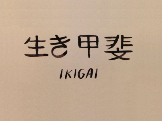 IKIGAI – Vanguardia Sustentable