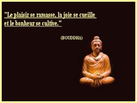 Populaire proverbe bouddha | Dites-le en francais | Pinterest | Attitude EU31