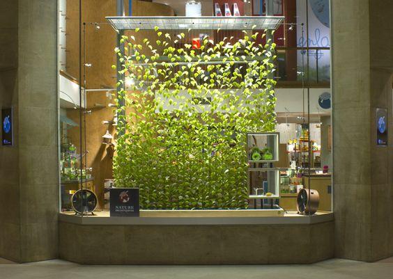 Pinterest le catalogue d 39 id es for Architecture vegetale