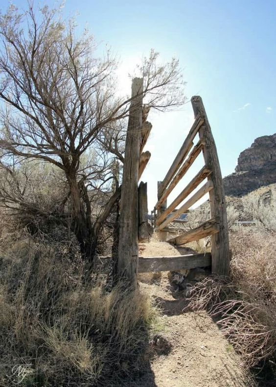 Old cattle chute in canyon outside Castleford ID by M.T. Photography