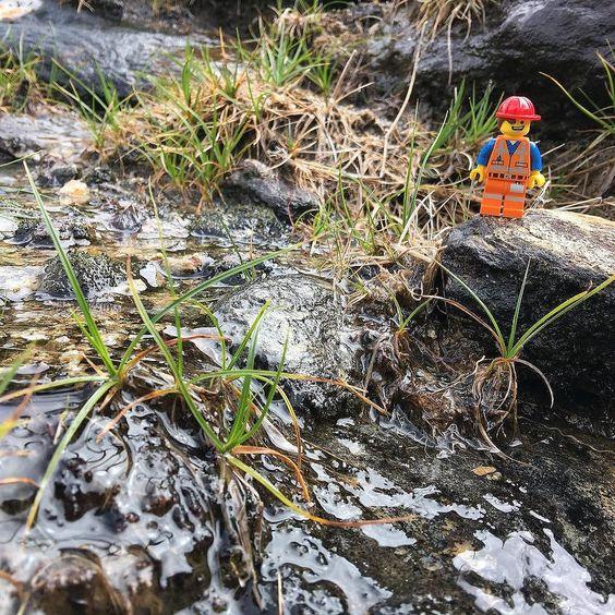 Wandern in den @Graubunden bergen mit dem @pokipsie @MySwitzerland_d #pokipsie365 http://www.flickr.com/photos/martinrechsteiner/28866013222/