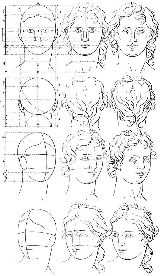 Dibujar Anatomia Humana. Best Escuela De Dibujo De Anatomia ...