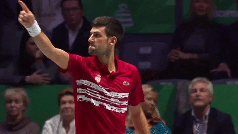 Popular Gif Novak Djokovic Davis Cup Davis Cup Tennis