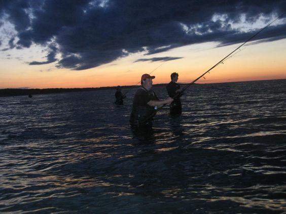 http://surf-fishanybeach.com/tips/index.html?hop=dwierman  #Outdoor #SurfFishing #Fishing
