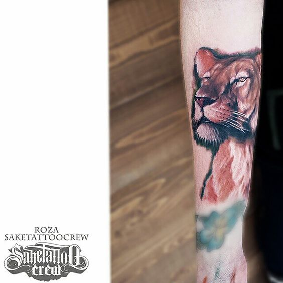 Got some work done on the animal sleeve... lioness addition!! Thanks for looking!! :D #animal #lioness #realistic #color #portrait #saketattoo #saketattoocrew