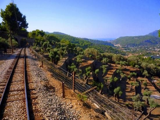 Soller Train: This is a wonderful journey on an old wooden train through the most spectacular scenery imaginable. However, they have put the prices up this year and it is now quite expensive. You can do the trip one way by bus and the other by train, which cuts down the cost.