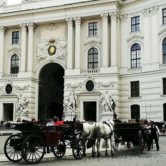 Gorgeous Vienna