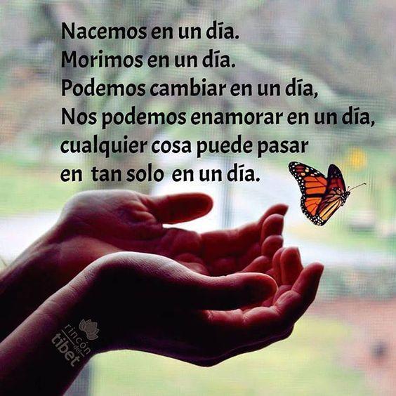 Tan solo en un día... #pensamientospositivos #solo #nacer #pensamientosdelrincon #morir #amor #like4like #happy #rincondeltibet