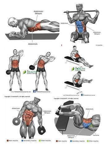 16+ Weight lifting exercises for osteoporosis ideas
