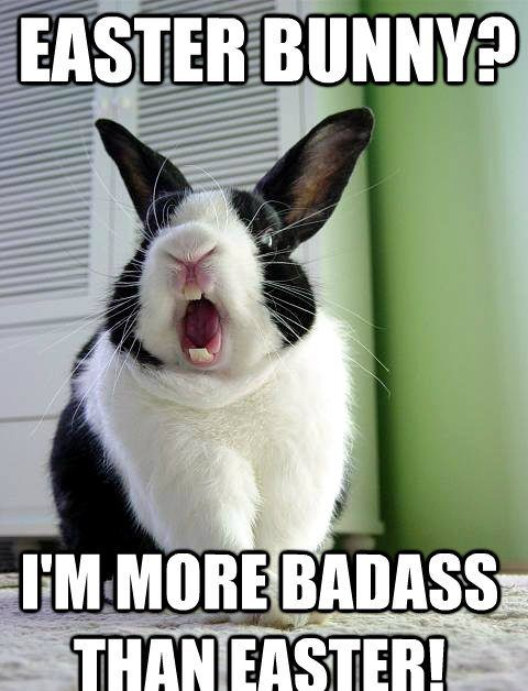 Funny Easter Meme In 2020 Funny Easter Memes Easter Humor Happy Easter Funny