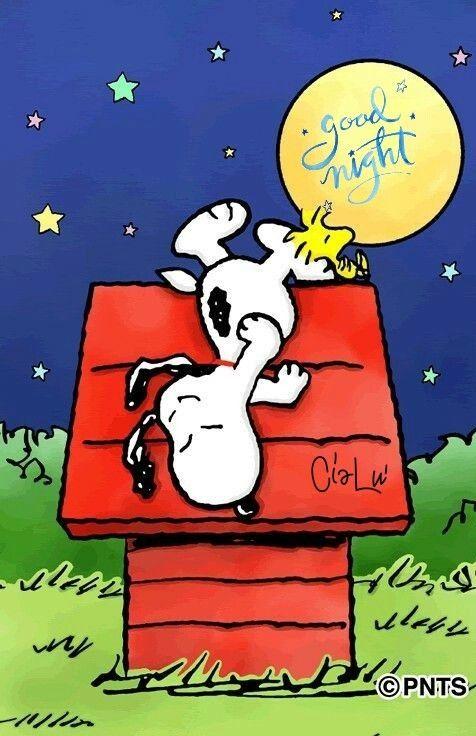 Buona Notte My Snoopy Citazioni Snoopy Buona Notte
