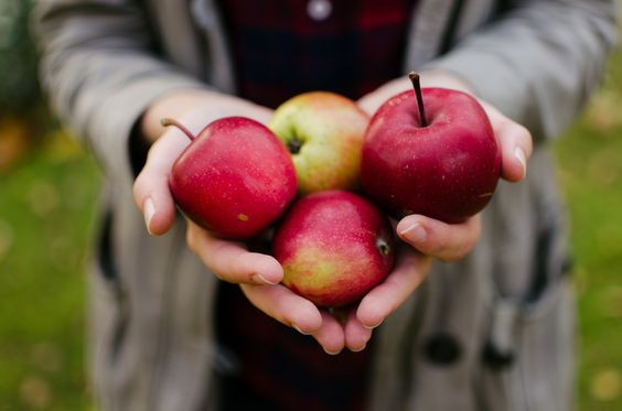 El ritual de las manzanas