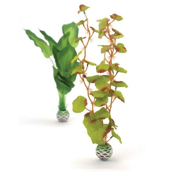 biOrb Aquariumpflanze grüne Seidenpflanze M